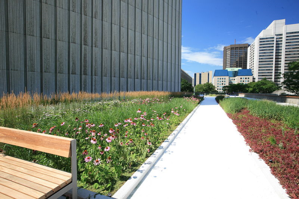 Citygreen - Raising The Roof on Urban Landscape Design: Greenroof Future