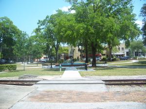 Citygreen - Winter Park, Florida Goes Out on a Limb