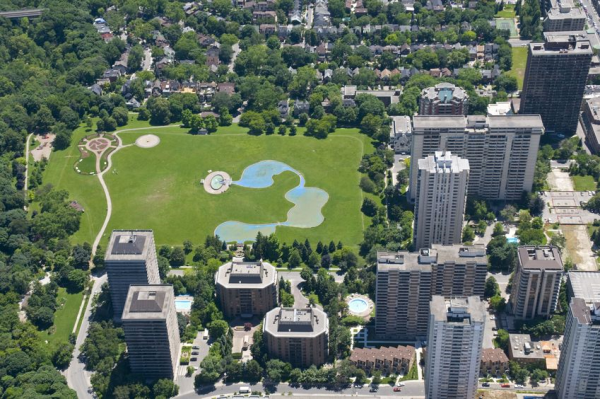 The Important Roles Behind a Successful Urban Forestry